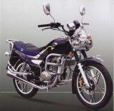 Moto (ZX150-5 (III))
