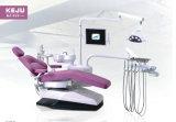 Matériel dentaire d'élément dentaire de cuir de bonne qualité de la Chine