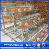 Tipo automático durable jaula del mejor diseño H de Tianrui del pollo de la capa de la batería