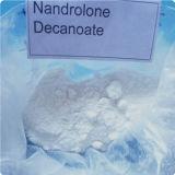 처리되지 않는 신진대사 스테로이드 분말 Nandrolone Decanoate를 건축하는 근육