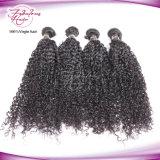 Weave человеческих волос Remy индийских волос оплетки Kanekalon Kinky курчавый