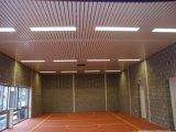 Décoration intérieure en aluminium de panneau de plafond de bande de vente chaude
