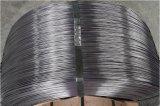 높은 탄소 최신 판매 봄 철강선 높이 장력 0.9mm