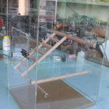 Het AcrylHuis van uitstekende kwaliteit van het Huisdier van de Voeder van de Vogel van de Kooi van de Papegaai