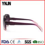La promotion Sun en plastique ombrage les femmes de lunettes de soleil de lunetterie (YJ-S057)