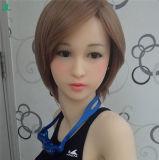 Volles Silikon-feste Geschlechts-Puppe für Männerrealistisches Pussy-geöffnetes reizvolles Mädchen-erwachsene Liebes-Puppen