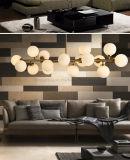 Lampadario a bracci di Dlss Hotsale per illuminazione di vetro moderna del salone LED