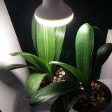 O bulbo do diodo emissor de luz das plantas internas cresce a iluminação