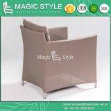 Mobilia stabilita della tessile del sofà della tessile del sofà moderno dell'imbracatura (stile magico)