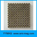 De kleine Uiterst kleine Micro- MiniMagneet van de Precisie