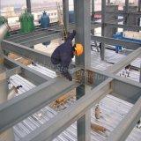 Construcción del acero estructural para el taller y el almacén