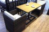 Tabella Furniture-146 esterno del rattan di svago