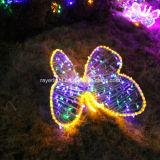 Seule RVB lumière de chaîne de caractères de Noël de décoration de la lumière extérieure