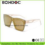 Óculos de sol clássicos plásticos do melhor projeto (C2199)