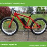 Bicicleta elétrica da potência verde com o En15194 aprovado para adultos