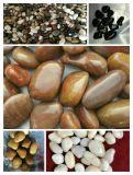 景色/庭の舗装のための多彩の白熱玉石の小石の石