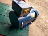 Monofase della st di potere elettrico del generatore