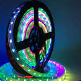 Color Magic 1903IC LED Luz de tira flexible