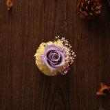 Fiore naturale di 100% Handmade per il regalo di giorno del biglietto di S. Valentino