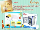 Neuer und preiswerter Hhd automatischer Huhn-Ei-Inkubator für Verkauf (YZ-32)