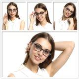 대중적인 디자인 아세테이트 Eyewear 안경알 광학 프레임