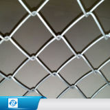 Engranzamento da cerca da ligação Chain do PVC /Gi/fio do diamante para Slats da privacidade