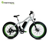 Bici elettrica di Montain della gomma grassa di vendita diretta 500W 48V della fabbrica con En15194