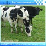 Wiese-Maschendraht-Zaun-Filetarbeit