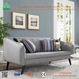 Nizza il sofà di cuoio comodo semplice ha impostato per il salone, disegno stabilito del sofà di legno ergonomico di disegno