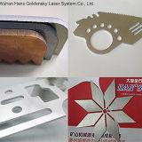 Blatt-Ausschnitt mit Laser-Ausschnitt-Gerät der Faser-2500W von Hans GS
