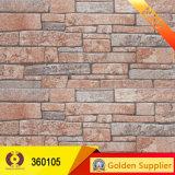 Azulejos Los más populares 3dinkjet exterior de pared (360101)