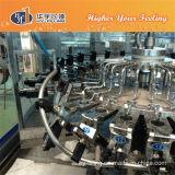 Città diRiempimento di Zhangjiagang della macchina di bottiglia da birra della bottiglia di vetro