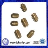 Mini conjunto de cobre amarillo del engranaje de gusano del OEM