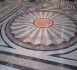 Mármol blanco de Guangxi/mármol blanco de Guangxi para el azulejo/la losa/Counertop/el suelo
