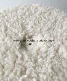 Fijar fácil blanca del árbol del gato Sherpa