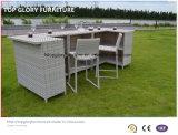 Barre de meubles de rotin de jardin réglée avec le coussin pour extérieur (TG-6003)