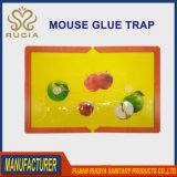 環境に優しく、安全なマウスラットの接着剤の皿