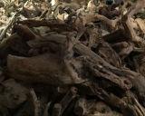 Гора Taihang может быть, котор сгорели порошком Thuja