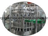 Ligne automatique de production de jus de fruits frais pour la bouteille de verre
