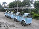 La poussée de crême glacée transporte en charrette des congélateurs d'étalage de /Gelato à vendre