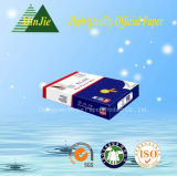 Document van het Exemplaar 80GSM van Fabrikant het Goedkope Hete Verkopende 210*297mm van China A4