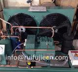 Compresor refrescado aire de Bitzer que condensa Unit-SPB07WM para el modelo 4DES-7Y