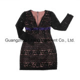 Frauen-Form-Kleid-Dame-Stickerei-Kleid
