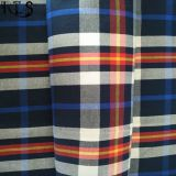 Tela teñida hilado 100% del popelín de algodón Rlsc50-19