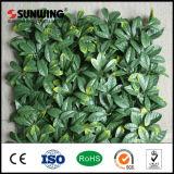 Barriere artificiali verdi protettive UV del dell'impianto di nuovo disegno di Sunwing