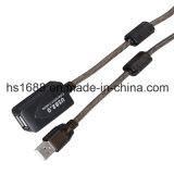 Type d'USB 2.0 pieds actifs de la rallonge 30 un Meters/100