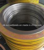 304graphite螺線形の傷のガスケットかCgi/Cg/Gaskets (SUNWELL)