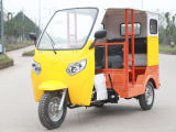 乗客のBajaji Tuk Tuk 3の車輪のオートバイ