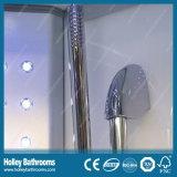 Panneau de douche Clean Cut Computer Display avec siège et grandes lampes LED (SR119N)