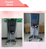 Rf frazionaria Needle Beauty Machine con ODM/OEM (MR16-4S)